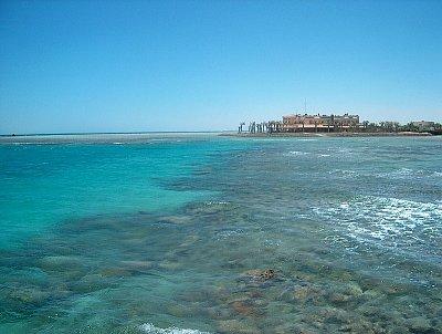 korálový útes u pláže Zeytuna