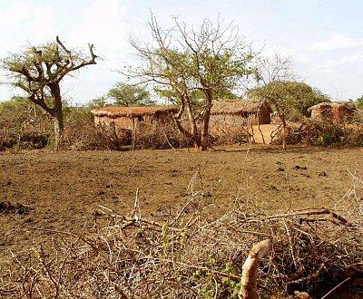 Tradiční vesnice v Keni