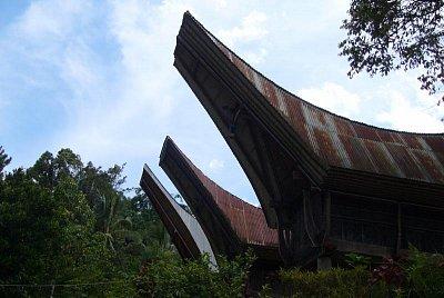 Sulawesi - Dieng (nahrál: admin)